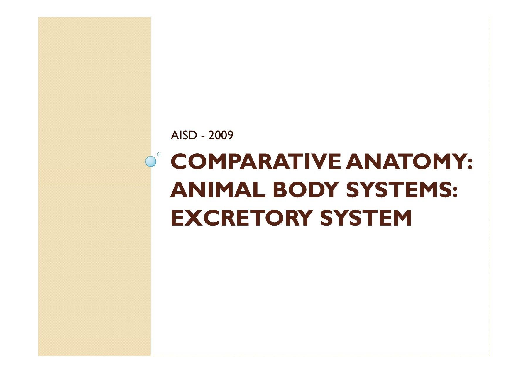 Comparative Anatomy: Animal Body Systems: Excretory System | Focusky