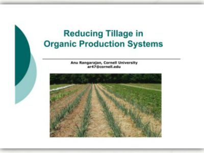 are conservative and zero tillage systems beneficial 371 added benefits are, however, obtained with zero tillage in terms of reduced losses in soil moisture with the undisturbed soil surface this is especially relevant in the study site in as much as water becomes a.