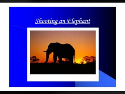 shooting an elephant a study guide